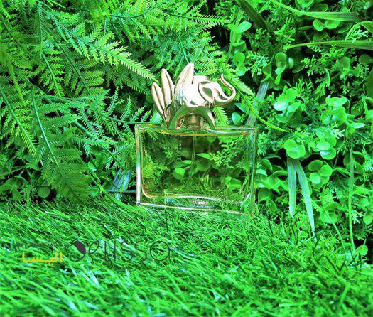 عطر کنزو جانگل زنانه ادو پرفیوم